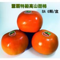 雪霸特級富有甜柿_8A