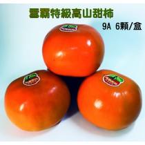 雪霸特級富有甜柿_9A