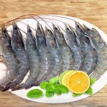 南美急凍生白蝦